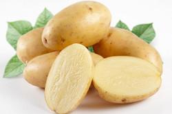 Сырой картофель для лечения стоматита