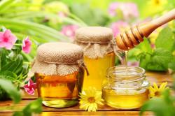 Польза меда для лечения парадонтита
