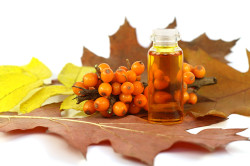 Облепиховое масло для лечения стоматита