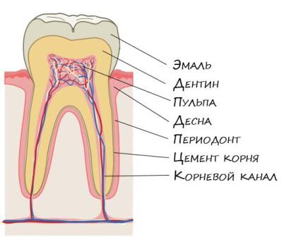 Кариес когда разрушается зуб